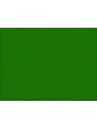 Liso Verde Claro