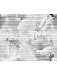 Celia white белый 01 50х60 3кт/2пл