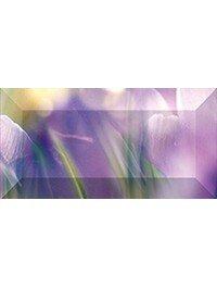 Crocus Рельефный br1020D286-2