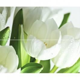 Digital Tulipany 2