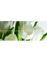 Digital Tulipany
