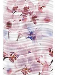Фортуна Орхидеи 1604-0032