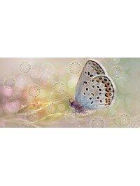 Мечта Бабочка 08-05-23-371-1