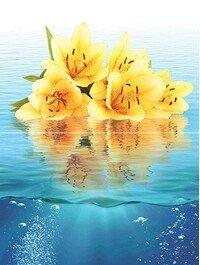 Ocean flowers P2-2D240