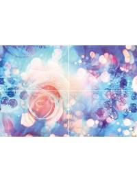 Rose P4D267