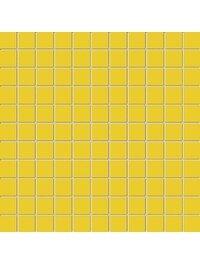 Yellow MS